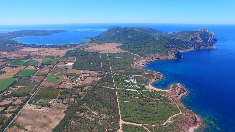 wine resort sale alghero