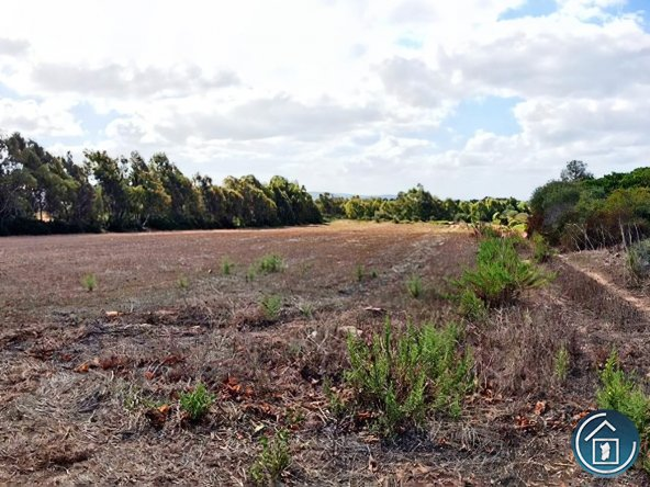 land sale alghero